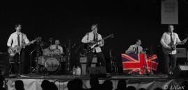 9 ottobre Fab Four in concerto per il canile-gattile di Moncalieri