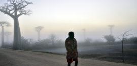19 ottobre Un viaggio in Madagascar: il nostro progetto a Tanamandroso.
